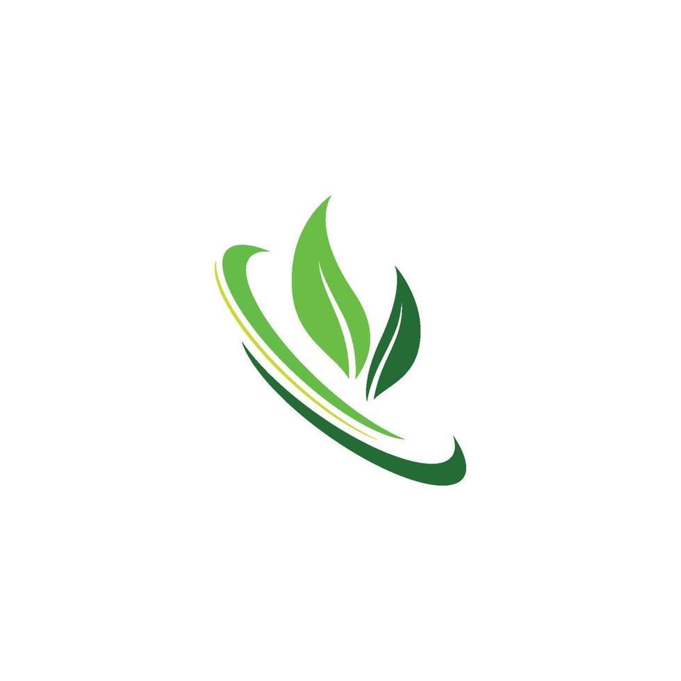 loghi di foglia verde ecologia natura elemento icona vettore