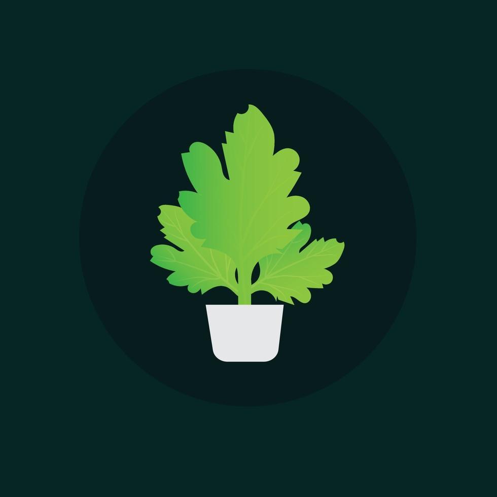 pianta d'appartamento in vaso. illustrazione dell'albero della decorazione della casa o illustrazione verde dell'albero dell'interno vettore