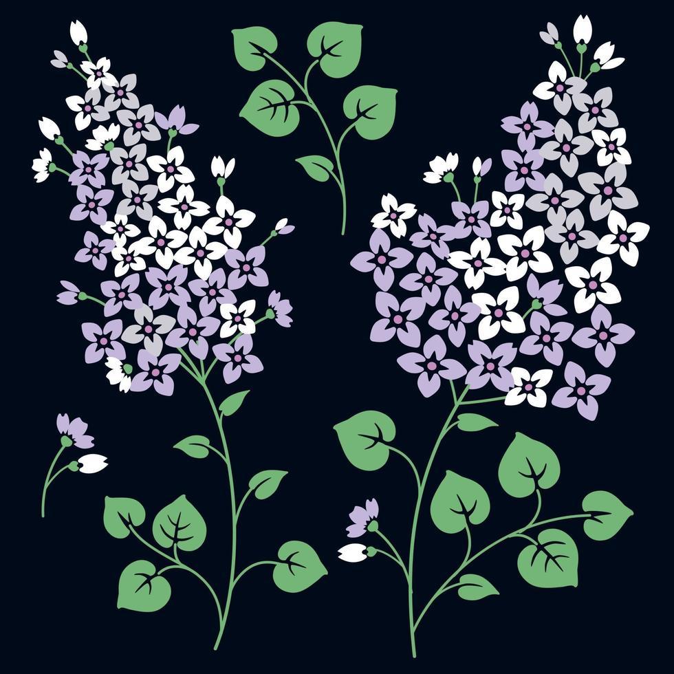 fiori lilla. isolato su uno sfondo nero vettore