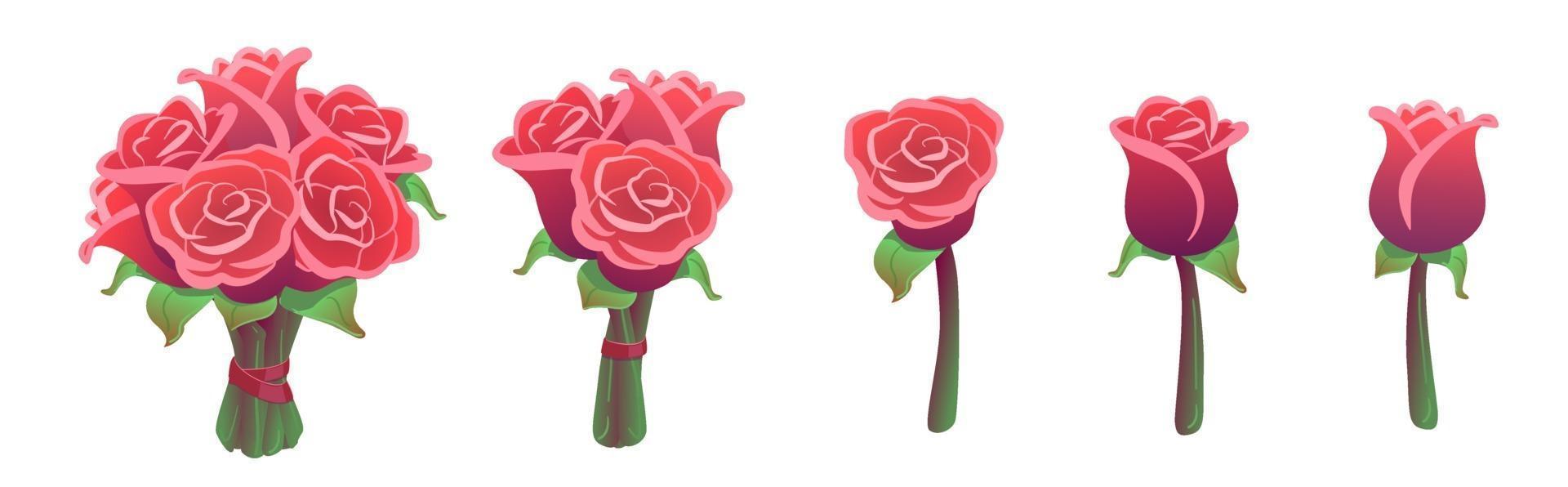 bella serie mazzi di rose rosse isolati su sfondo bianco. pacchetto di adesivi regalo di San Valentino. fiori grandi, piccoli e singoli. collezione floreale di nozze. illustrazione vettoriale. amore, elementi di design romanticismo vettore