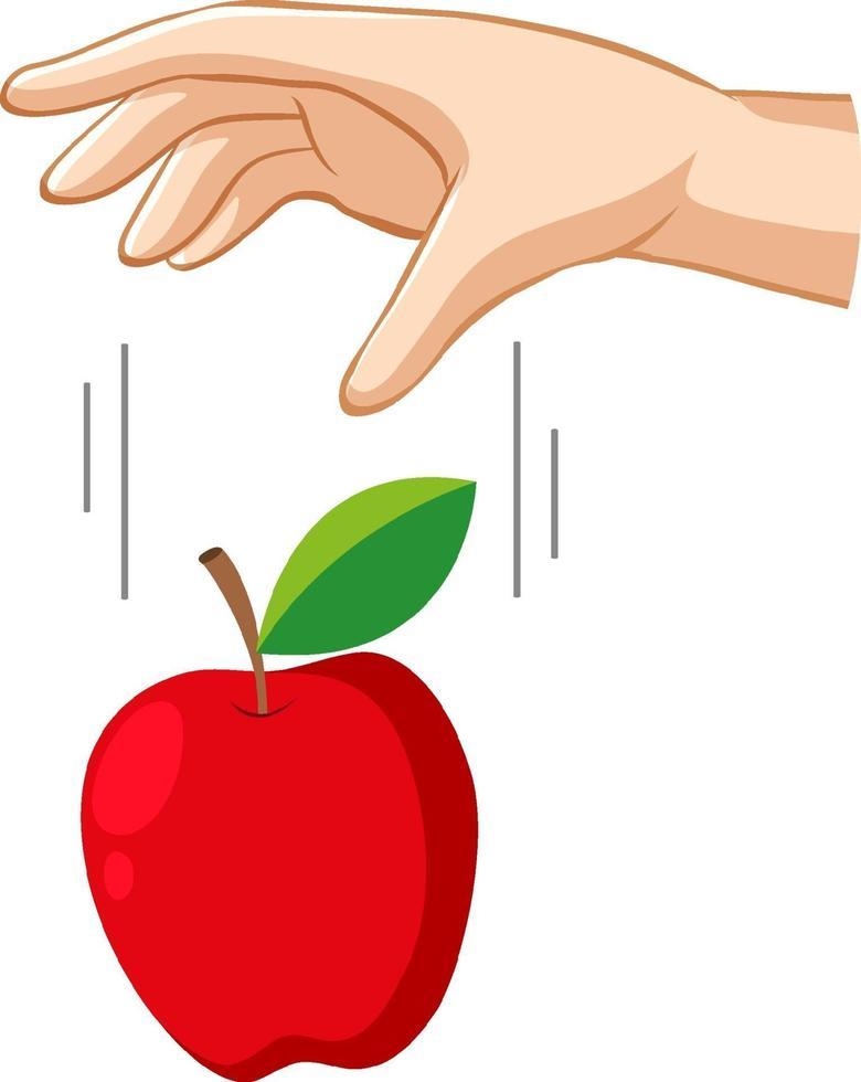mano che fa cadere una mela per esperimento di gravità vettore