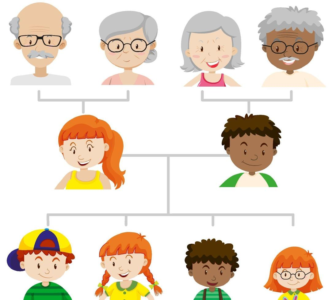 diagramma che mostra un albero genealogico di tre generazioni vettore