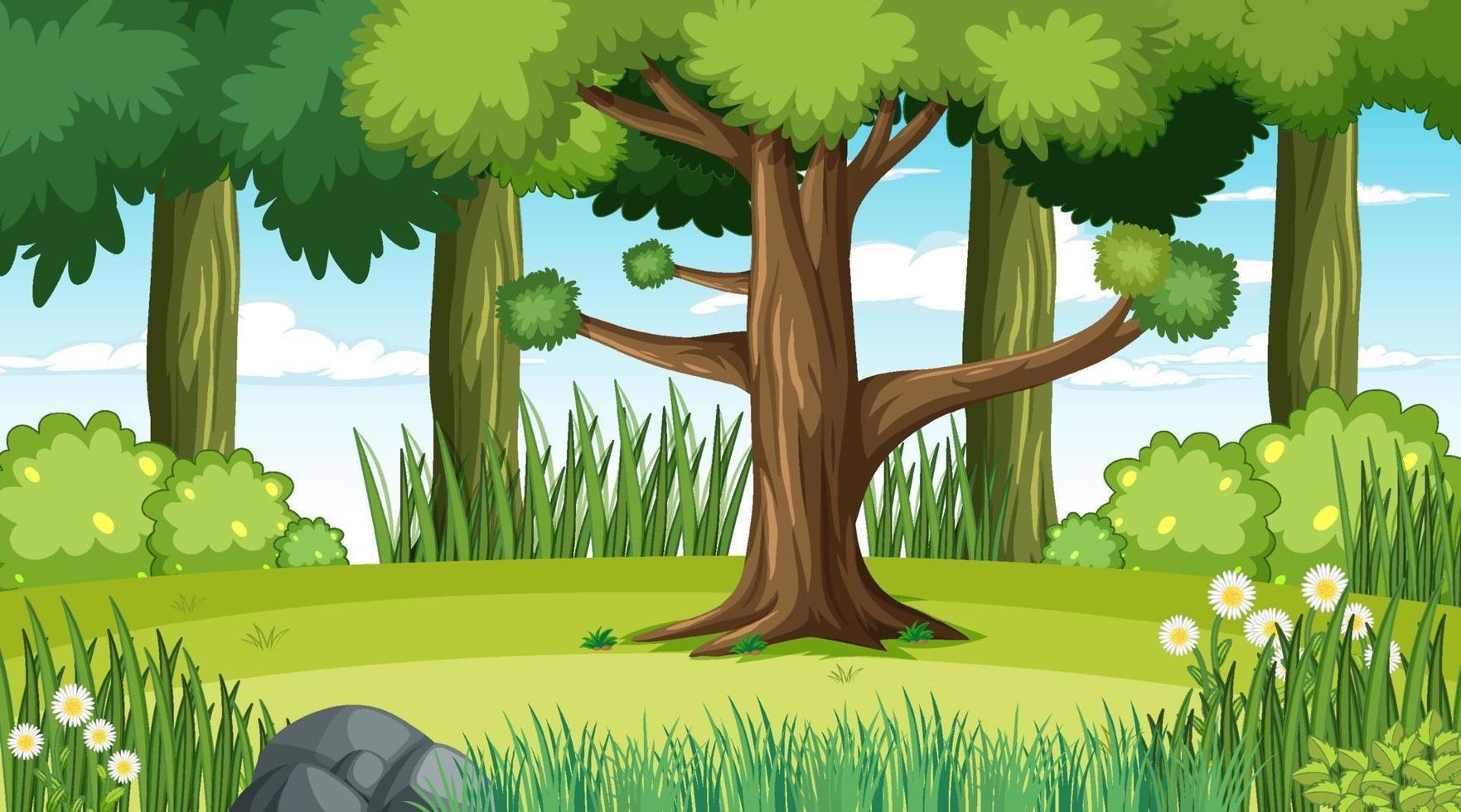 scena del paesaggio forestale durante il giorno vettore