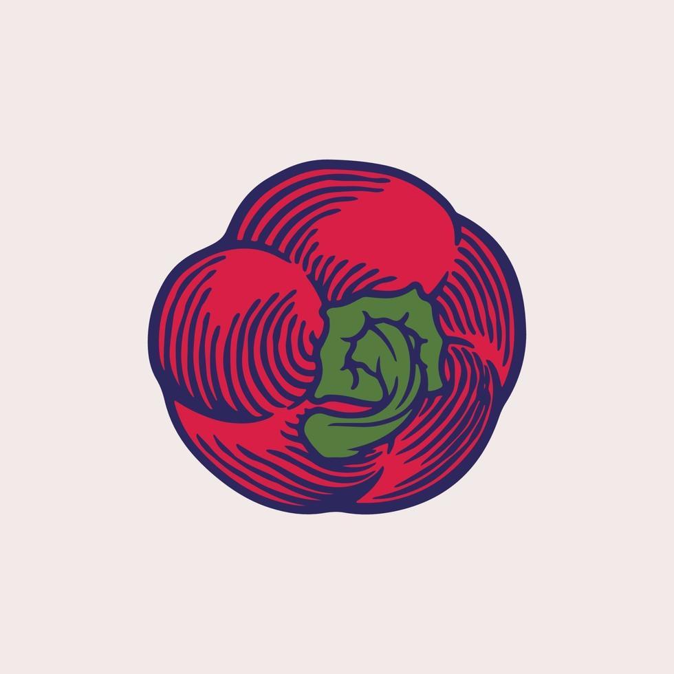 illustrazione vettoriale disegnato a mano di paprika rossa. oggetto in stile vegetale inciso. pepe messicano piccante caldo isolato. disegno dettagliato di cibo vegetariano. paprika del mercato agricolo. verdure fresche del mercato vintage