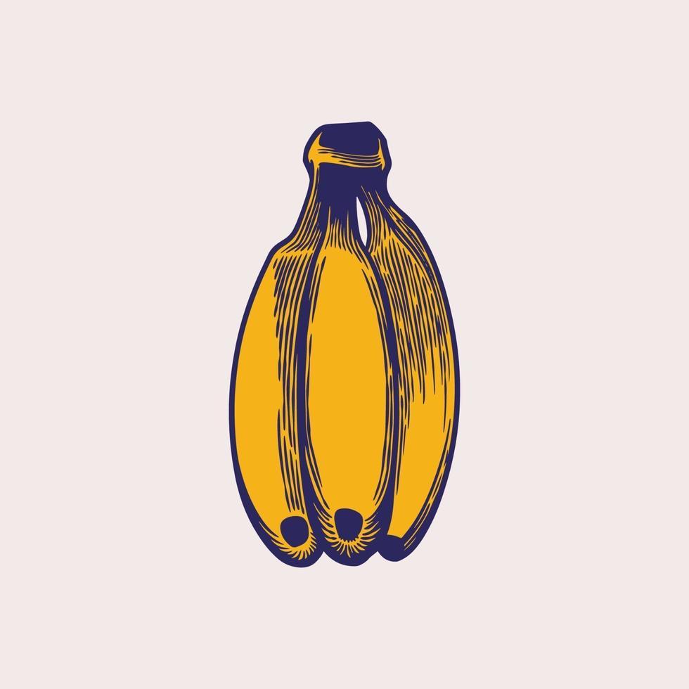 banana incisione vintage disegnata a mano. frutti gialli, un mazzo di banane. frutta tropicale, spuntino alla banana o tema di nutrizione vegetariana in schizzi retrò isolati. arte di illustrazione vettoriale