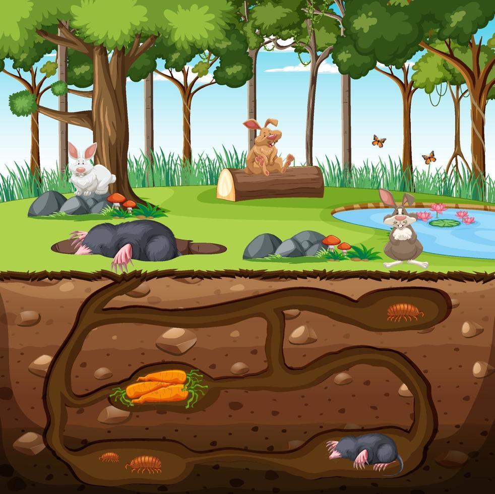 tana sotterranea degli animali con la famiglia delle talpe vettore