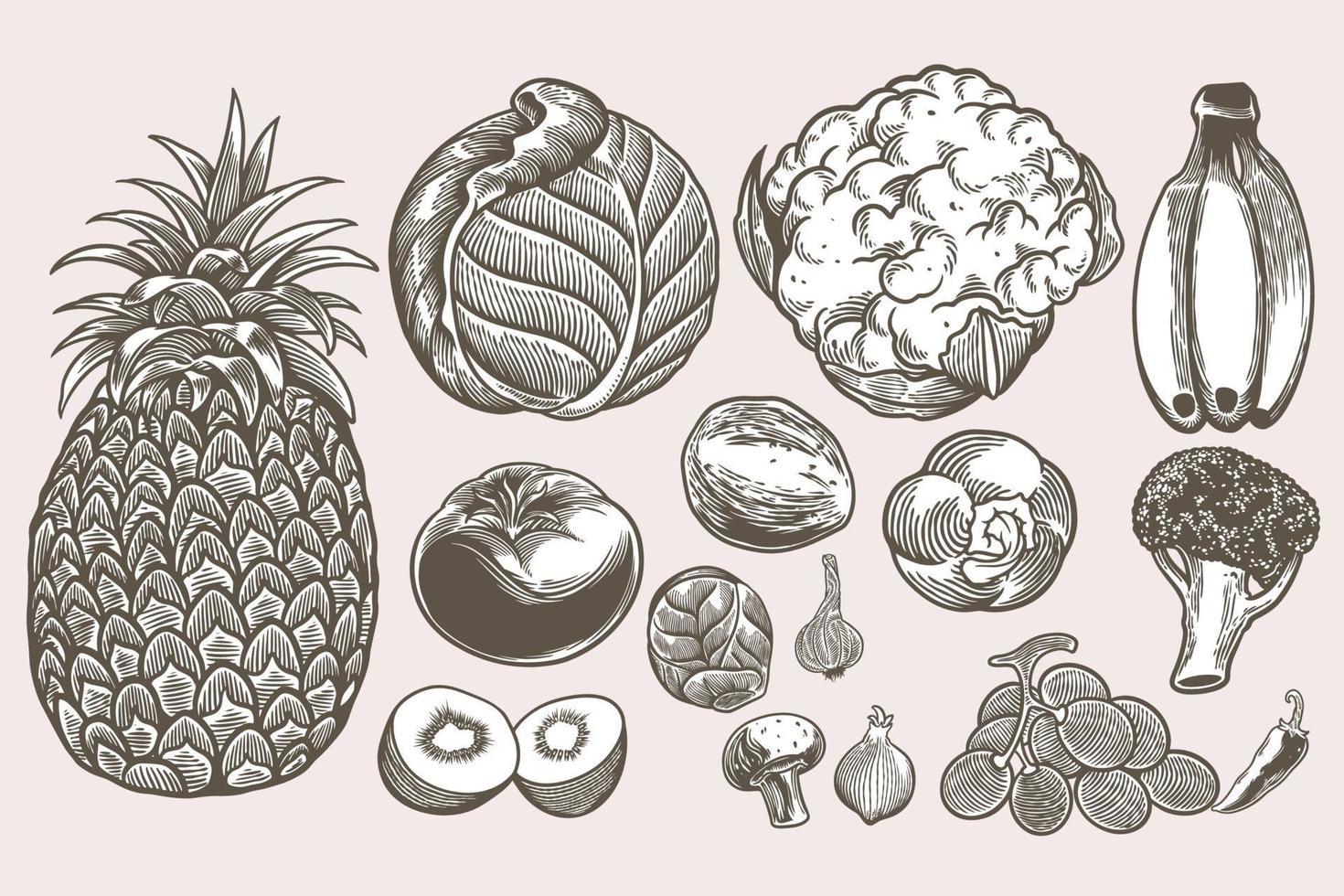 Insieme di doodle vegano raccolta di schizzi disegnati a mano modelli incisione vintage doodle. elementi isolati dettagliati su sfondo bianco, perfetti per menu, design del libro. immagini di cibo retrò vintage. vettore