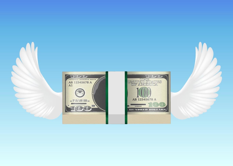 Banconota da 100 usd con ala di uccello che vola in cielo vettore
