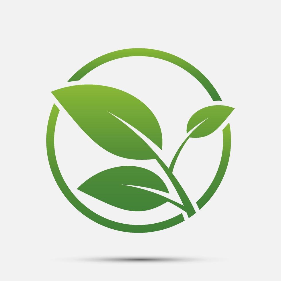 icona foglia verde vettore