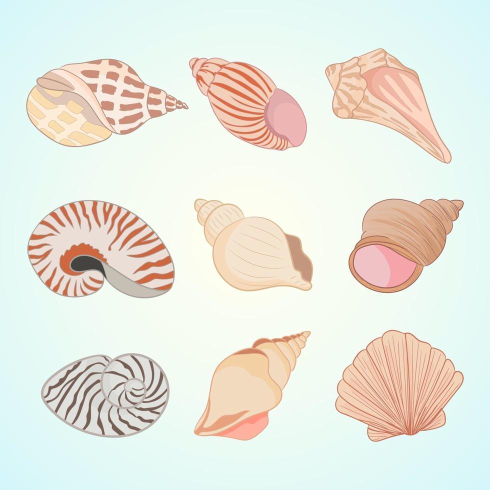 icone vettoriali di conchiglia di mare in stile cartone animato