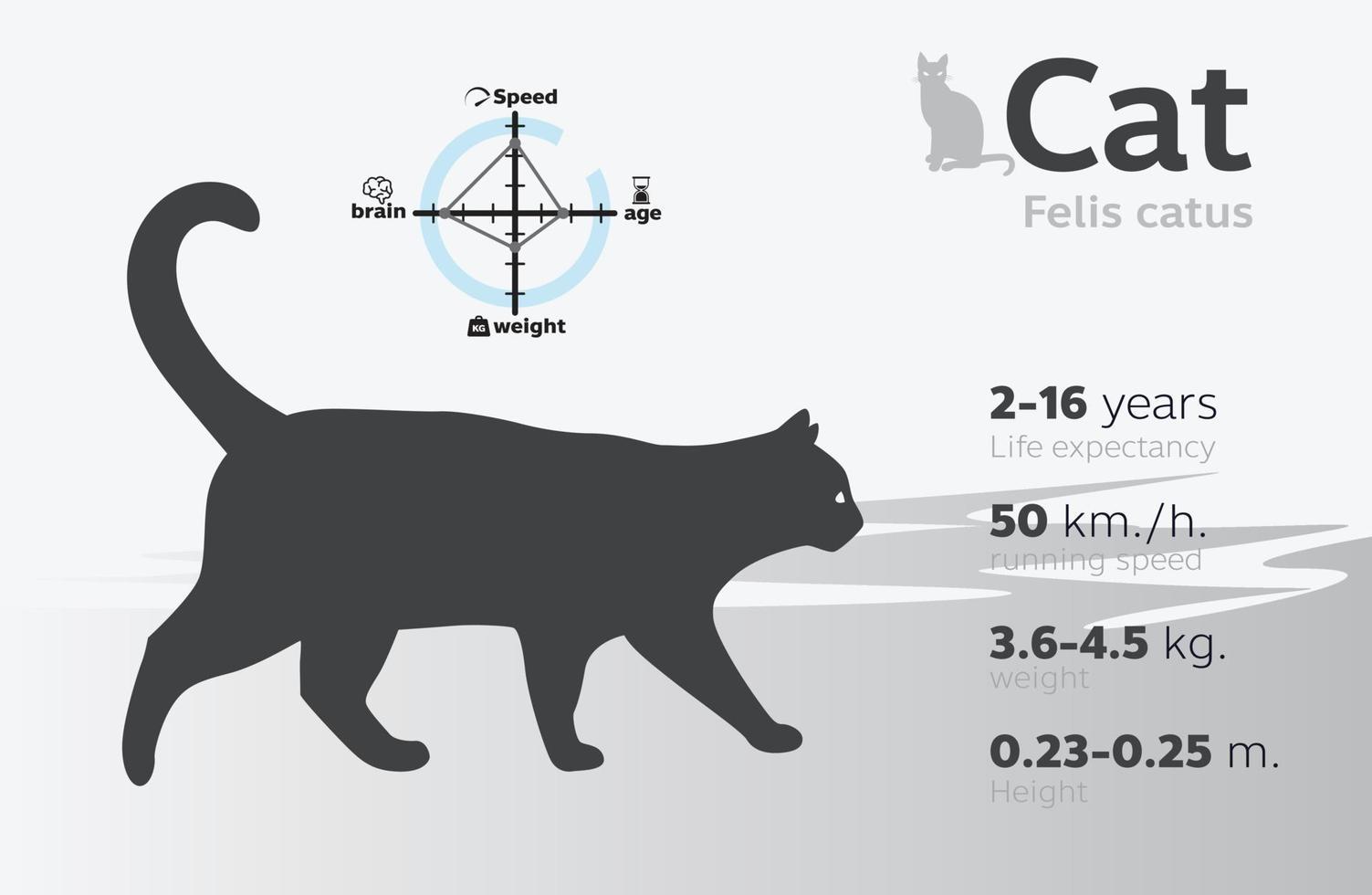 illustrazione delle informazioni del gatto su uno sfondo vettoriale 10