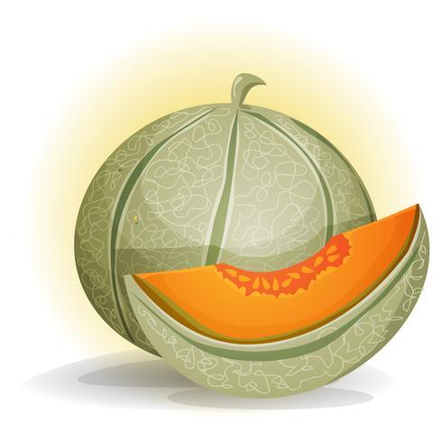 Melone vettore