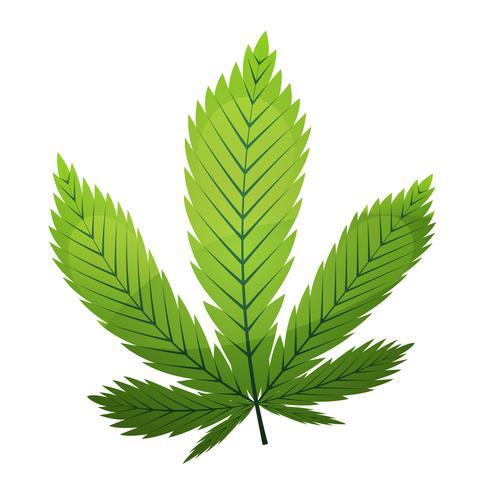 Foglia di cannabis vettore