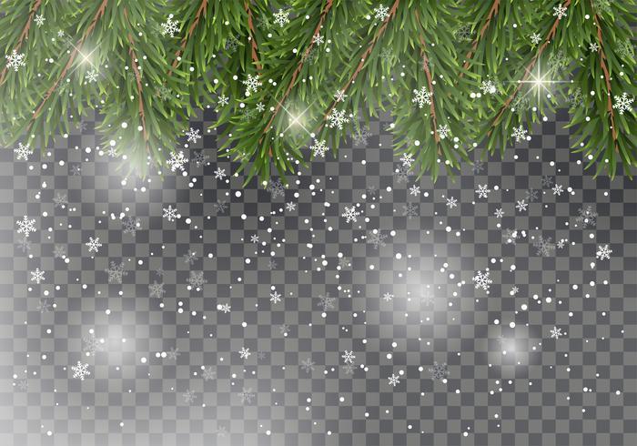 Rami di alberi di abete di Natale su sfondo trasparente con la neve che cade. Design di Capodanno per carte, banner, volantini, manifesti di partito, intestazioni. vettore