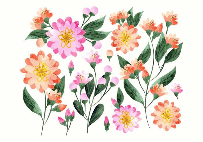 Decorazioni floreali disegnati a mano colorati di vettore