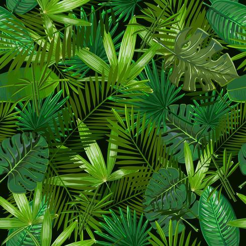 Modello senza cuciture con foglie di palma tropicale su sfondo nero. vettore