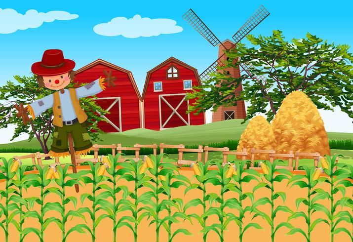 Scena dell'azienda agricola con colture e spaventapasseri vettore
