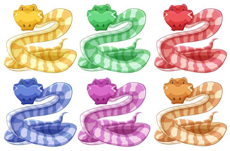 Diversi colori di serpente vettore