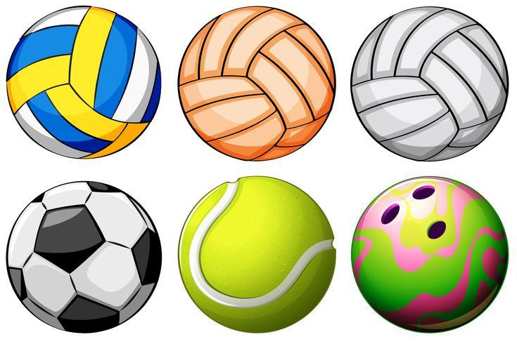 Set di palle sportive vettore