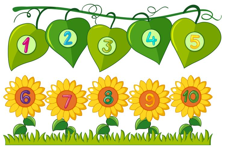 Numeri da uno a dieci su foglie e fiori vettore