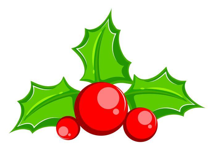 Foglia di albero di Natale agrifoglio comune vettore