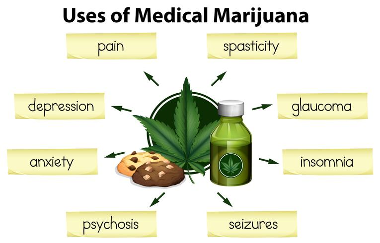 Gli usi della marijuana medica vettore