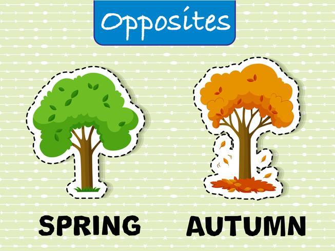 Primavera e autunno parole opposte vettore