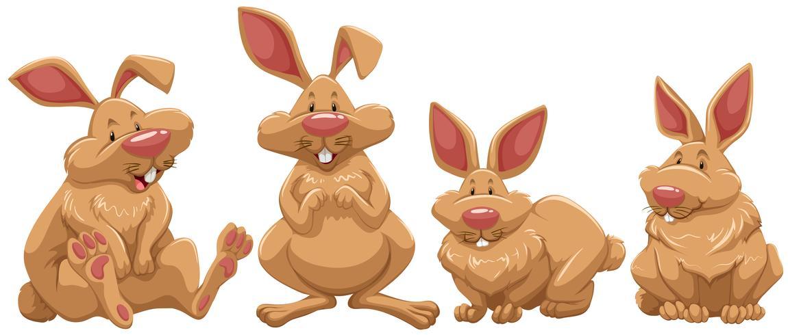 Quattro conigli con pelliccia marrone vettore