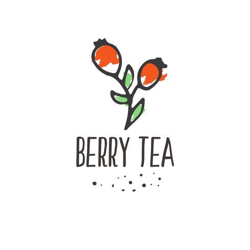 Stampa di tè alla bacca. Design del pacchetto di bevande calde a base di erbe biologiche. vettore