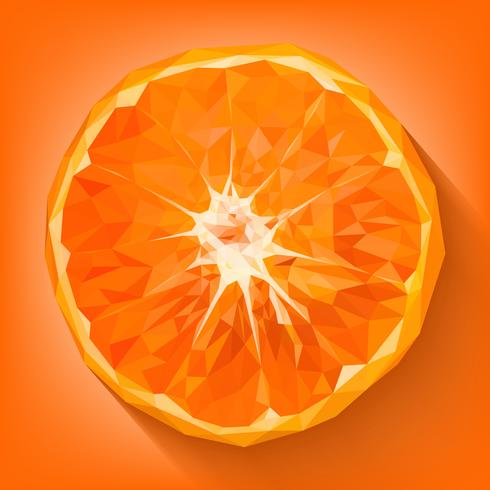 Arancio, uno dei frutti di buon auspicio cinesi vettore