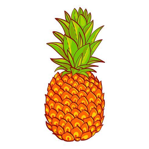 Ananas. Disegnato a mano. Stampa su t-shirt vettore