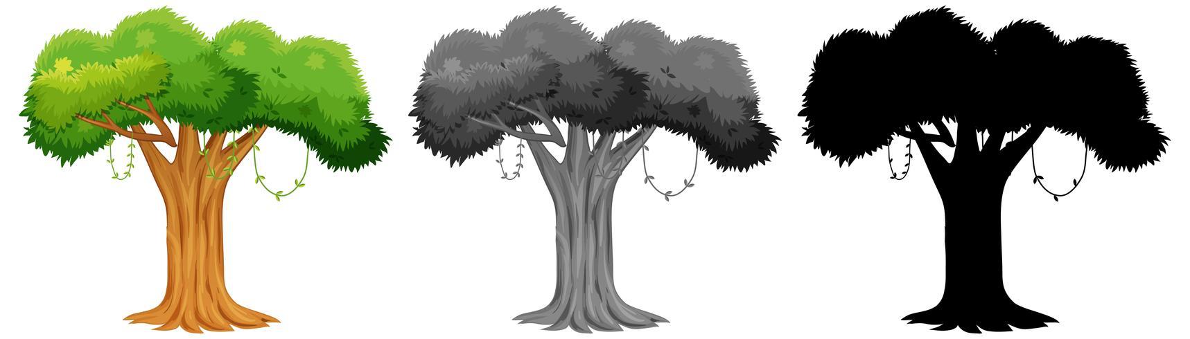 Set di design albero vettore