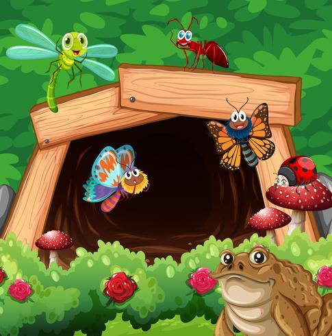 Diversi tipi di insetti davanti al tunnel vettore