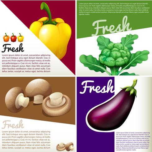 Poster di infografica con verdure fresche vettore