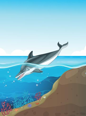 Delfino nuota sotto il mare vettore