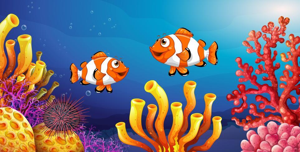 Scena subacquea con pesci pagliaccio e ricci di mare vettore