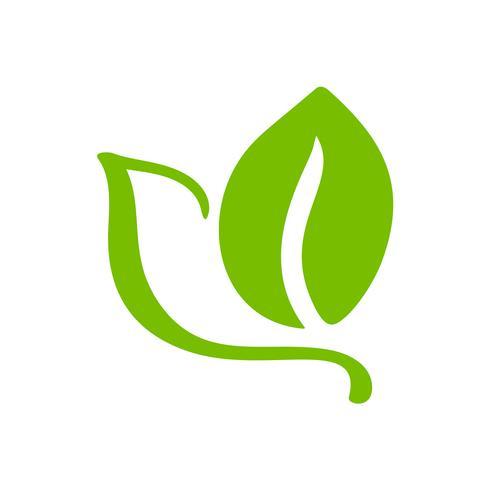 Logo della foglia verde di tè. Icona di vettore di ecologia natura elemento organico. Illustrazione disegnata a mano di bio calligrafia di eco vegano