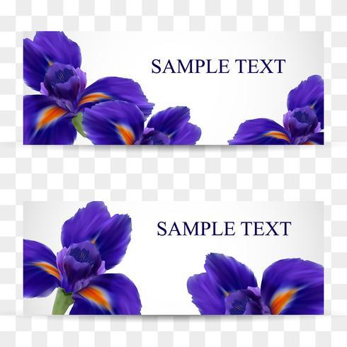 Un set di carte o cartoline con fiori di iris realistici vettore