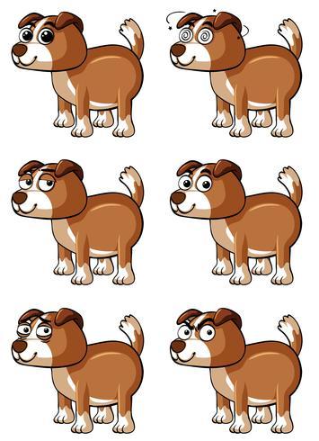 Cane marrone con diverse emozioni facciali vettore