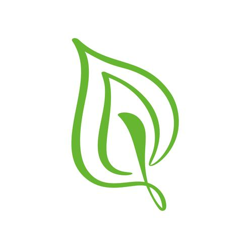 Logo della foglia verde di tè. Icona di vettore dell'elemento di natura ecologia floreale. Illustrazione disegnata a mano di bio calligrafia di eco vegano