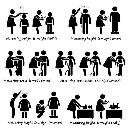 Misurazione dell'altezza, del peso e delle dimensioni del corpo per neonati, bambini, donne e uomini. vettore