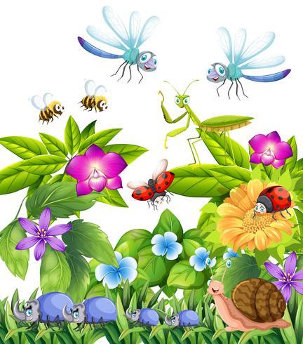 Molti insetti volano in giardino vettore