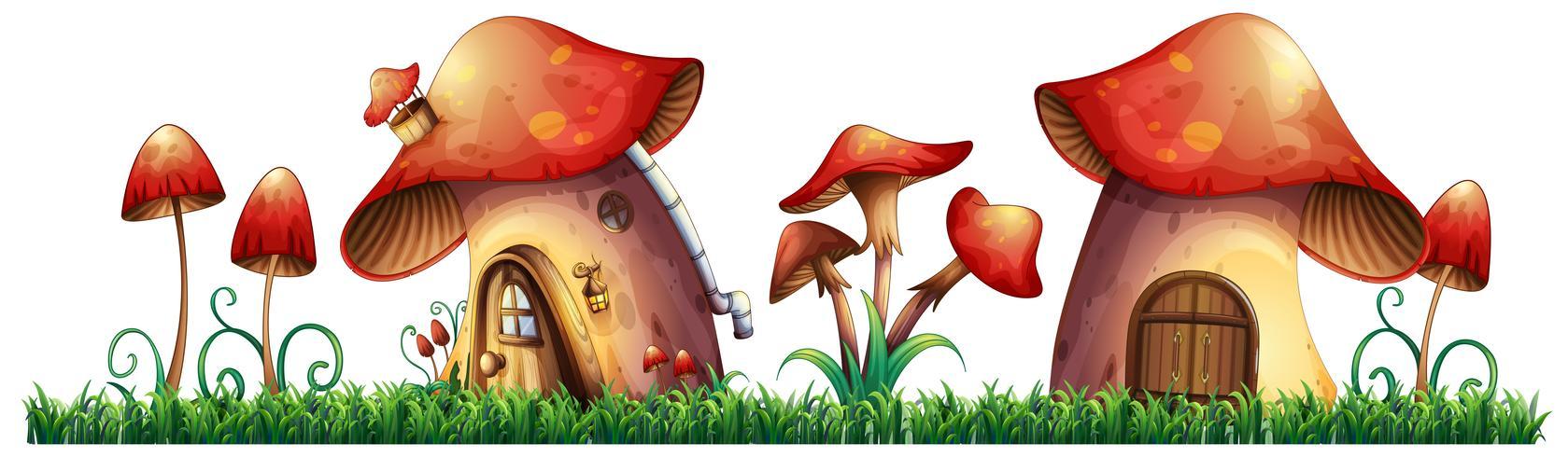 Case di funghi in giardino vettore