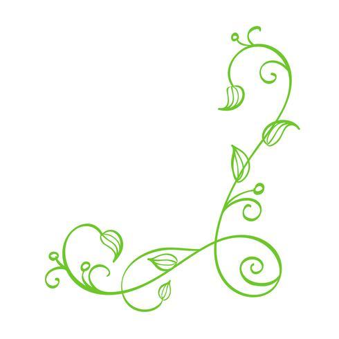 Angolo calligrafico disegnato a mano di vettore verde. Spring Flourish Design Element. Decorazioni in stile floreale chiaro per biglietto di auguri, web, matrimonio e stampa. Isolato su sfondo bianco Calligrafia e lettering illustrazione