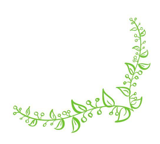 Elemento di disegno fiorito della primavera calligrafica disegnata a mano di vettore verde d'angolo. Decorazioni in stile floreale chiaro per biglietto di auguri, web, matrimonio e stampa. Isolato su sfondo bianco Calligrafia e lettering illustrazione