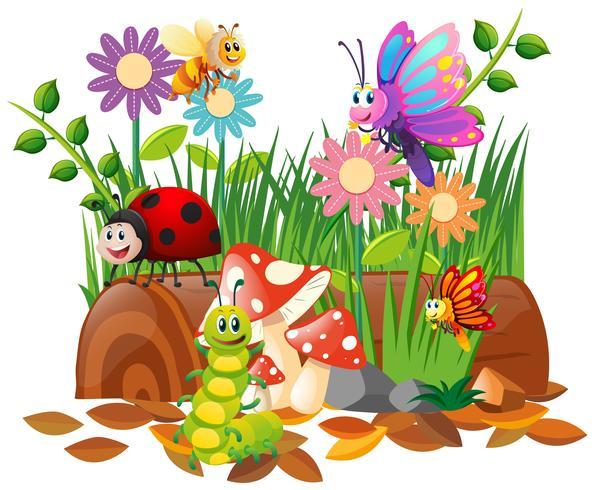 Diversi tipi di insetti in giardino vettore