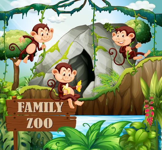 Famiglia delle scimmie nel giardino zoologico della natura vettore