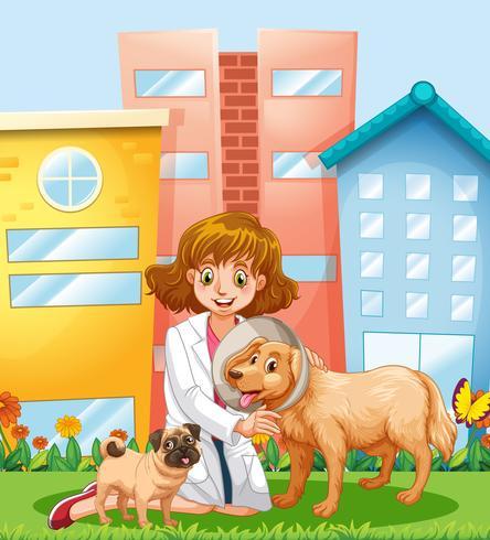 Un veterinario che si prende cura del cane vettore