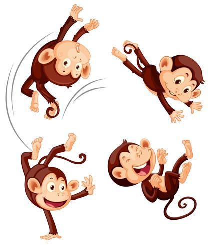 Un insieme di scimmia su sfondo bianco vettore