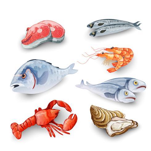 Set di prodotti ittici vettore
